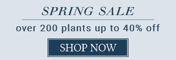 COUNTDOWN TO SPRING SALE