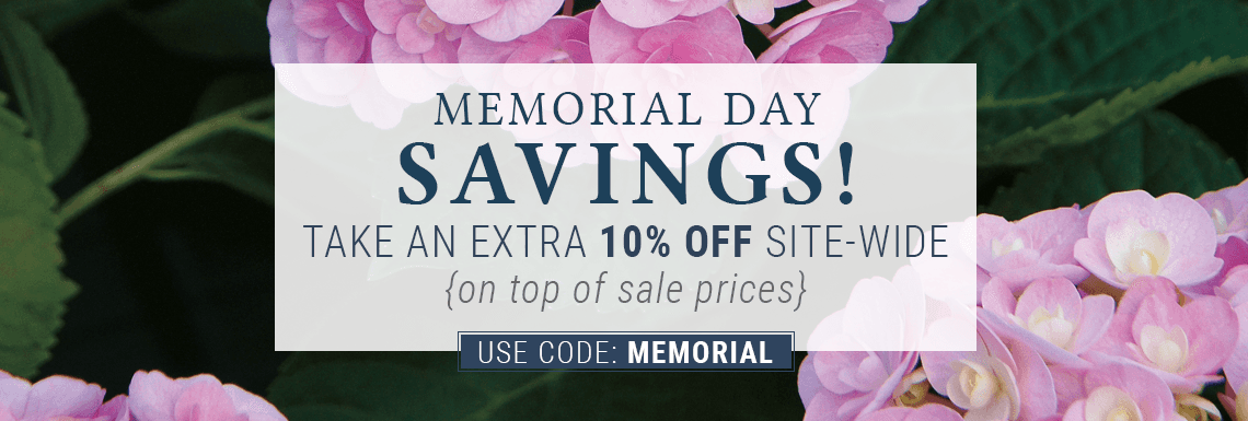 Take an extra 10% off sitewide with code MEMORIAL