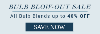 Bulb Blow-Out Sale