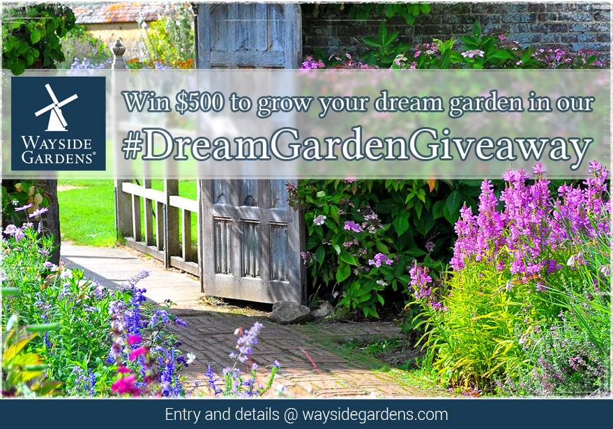 Dream Garden Giveaway