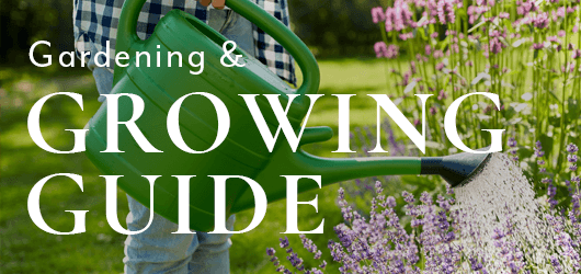 Gardening and Growing Guide