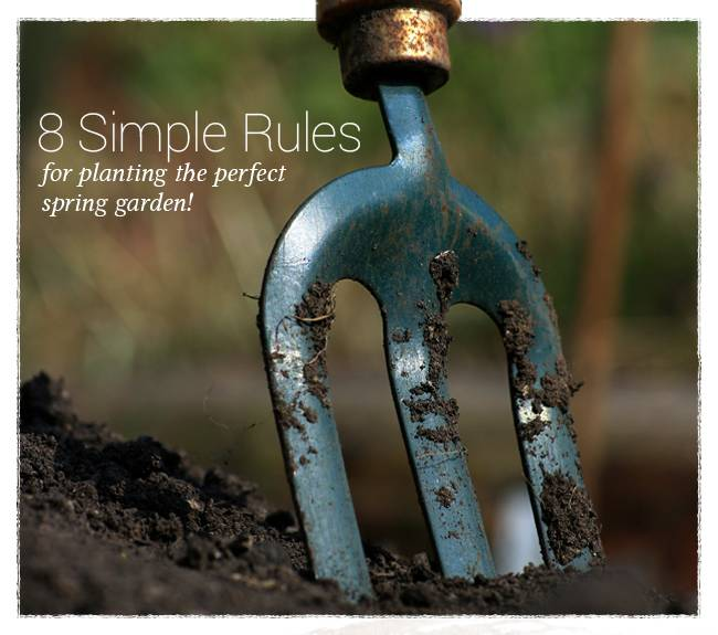 8 Simple Rules for planting the perfect Spring Garden!