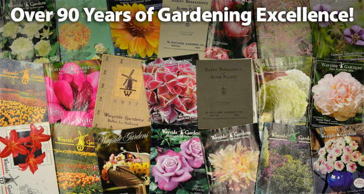 Over 90 years of gardening excellence!