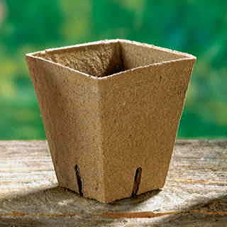 2 1/4 inch Square Jiffy Pots - Pack of 100