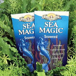 Sea Magic Plant Growth Stimulant