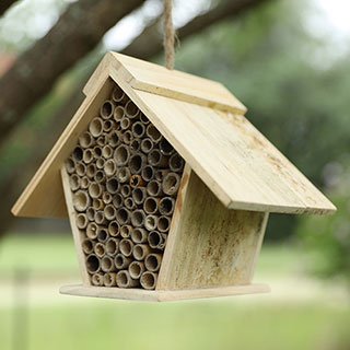 Songbird Essentials Bee A-Frame