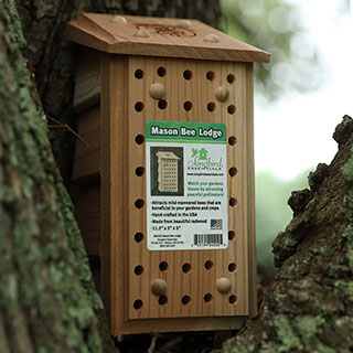 Songbird Essentials Mason Bee Lodge