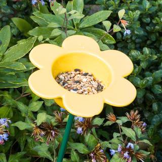 Ceramic Petal Feeder Yellow