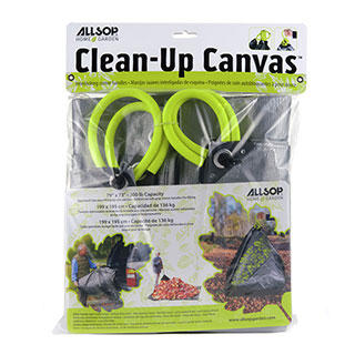 Clean Up CanvasImage