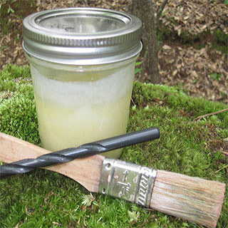 Log Plugging Kit for Growing Mushrooms