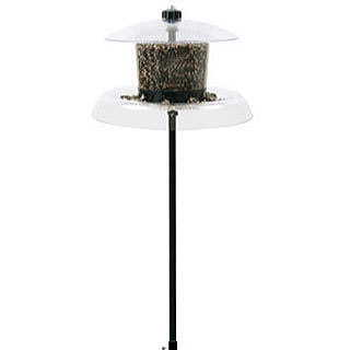 Droll Yankees® Jagunda Squirrel-Proof Bird Feeder with Auger