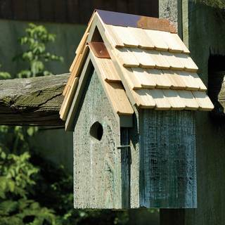 Grey Bluebird Cottage Bird House