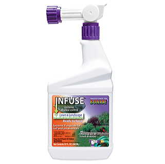 Infuse Concentrate RTS