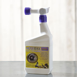 MoleMax Ready-to-Spray