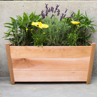 Western Cedar Planter Rectangular From Wayside Gardens
