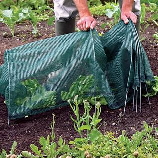 Easy Standard Net Tunnel