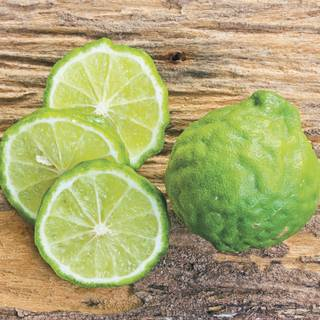 Citrus Kieffer Lime