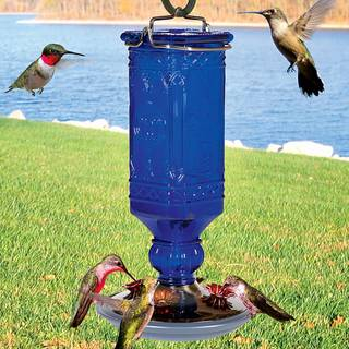 Antique Blue Bottle Hummingbird Feeder