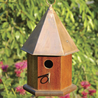 Copper Songbird Bird House - Mahogany
