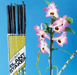 5 Foot Bamboo Stakes - Pack of 12Image