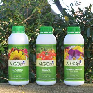 AlgoPlus Fertilizer