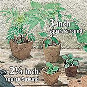Round 3 inch Jiffy Pots (pack of 22)