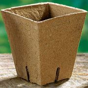 3 inch Square Jiffy Pots - Pack of 100
