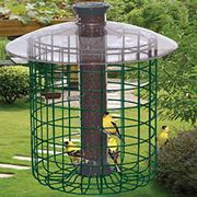 Droll Yankees® B7 Sunflower Domed Cage Shelter Feeder - Small