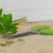 Triple Blade Herb Scissors with Sheath