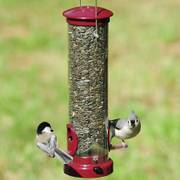 Berry Seed Tube Birdfeeder - Medium