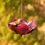 Crab Apple Bird Feeder