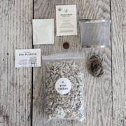 Eco-Planter Organic Herb Kit