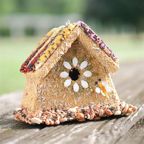 Rustic Wren House - Bird Feed and House