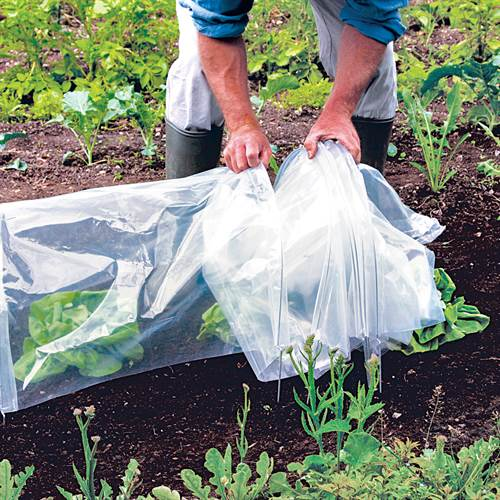 Easy Standard Poly Tunnel