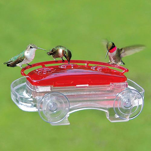 Jewel Box Hummingbird Feeder