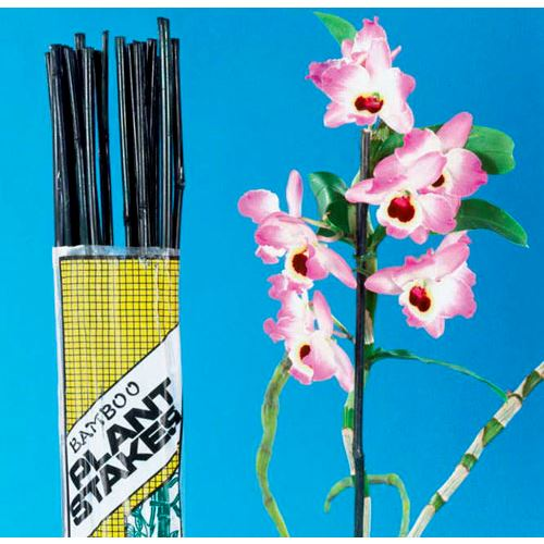 5 Foot Bamboo Stakes - Pack of 12